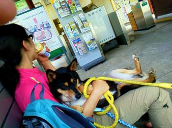 CN_2013_0523_1436_47.jpg